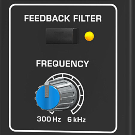 Integrated Feedback Filter and Sound Processor